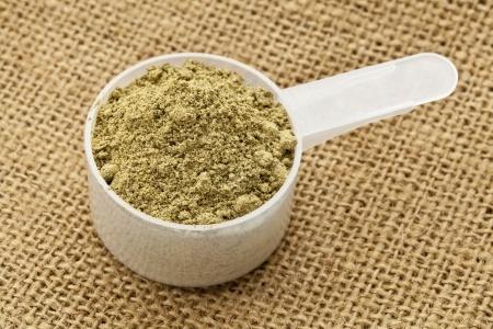 le proteine vegetali in polvere fanno male